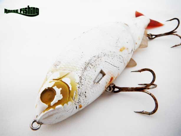 pêche carnassier lorraine raise fishing raisefishing