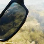 lunettes polarisantes raise fishing pêche en lorraine