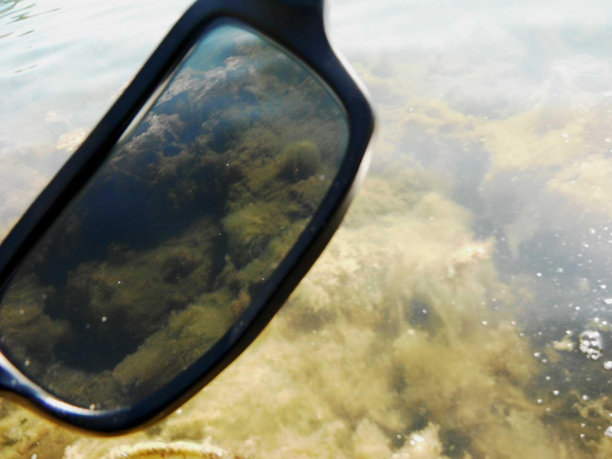Les lunettes polarisantes pour une pêche plus efficace