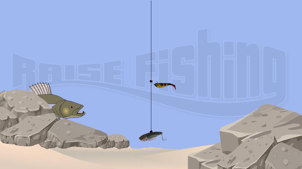 montage-drop-shot-lame-raisefishing
