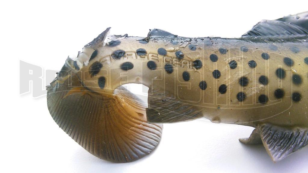 test-3d-trout-savagegear