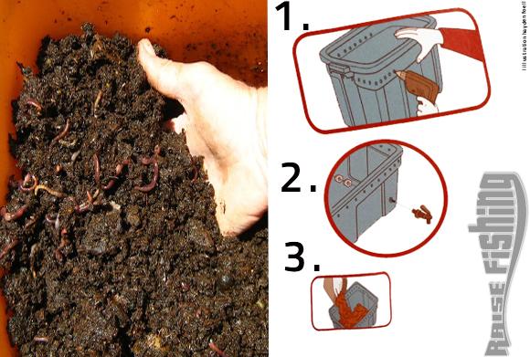 comment r aliser votre levage de vers de terre dans votre jardin. Black Bedroom Furniture Sets. Home Design Ideas