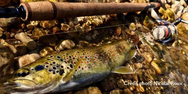 Montage godille, débutez la pêche à la truite