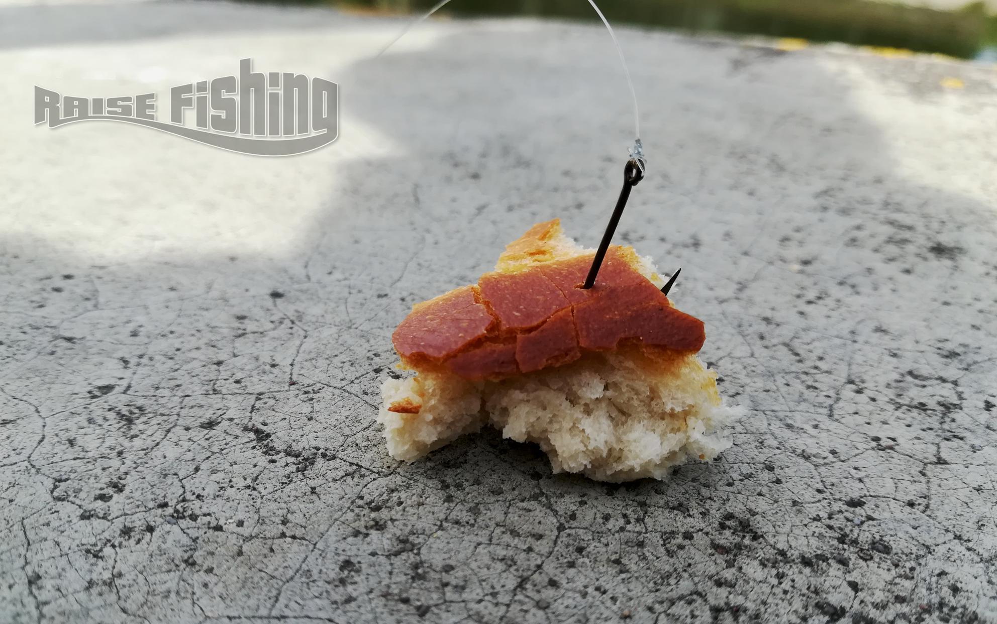 pêche de l'aspe au pain