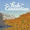 catalogue 2018 fish connection