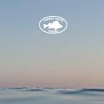 nouveautés leurres 2018 French touch fishing
