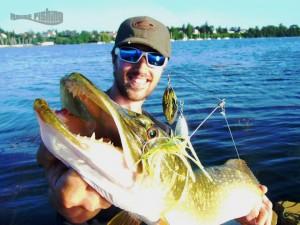 pêche-du-brochet-au-spinner