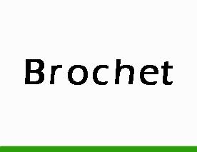 Brochet